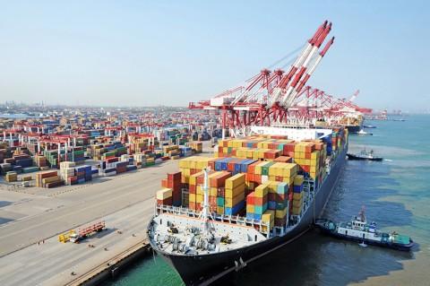 Exportcijfer wiet, gebaseerd op drijfzand
