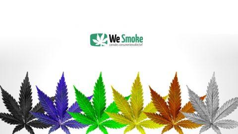 Nieuwsbrief bestuur We Smoke