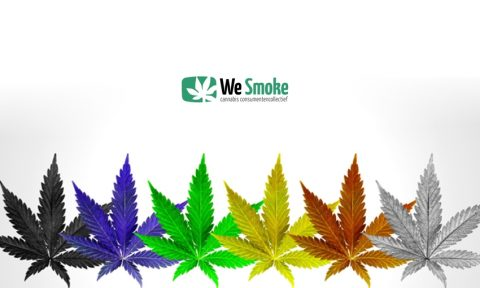 We Smoke Nieuwsbrief – juni