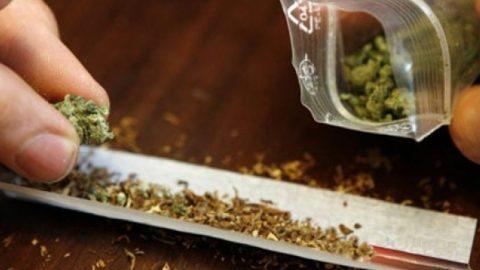 Zit jij nog in de cannabis kast?