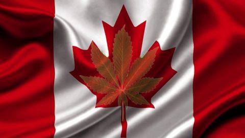 Cannabis lessen voor Canada