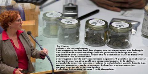 Cannabis Consumentenpanel